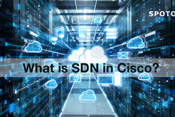 What is SDN in Cisco?