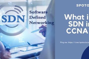 What is SDN in CCNA