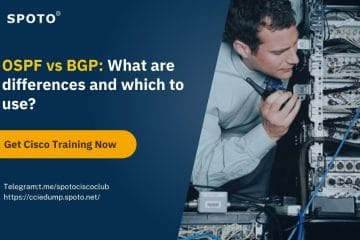 OSPF vs BGP: What are differences and which to use?